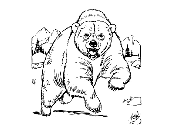 700x500 Grizzly Bear Coloring Pages Free Coloring Pages