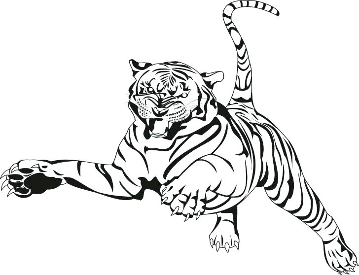 728x558 Store Coloring Page Tiger Coloring Book Plus Tiger Coloring Page