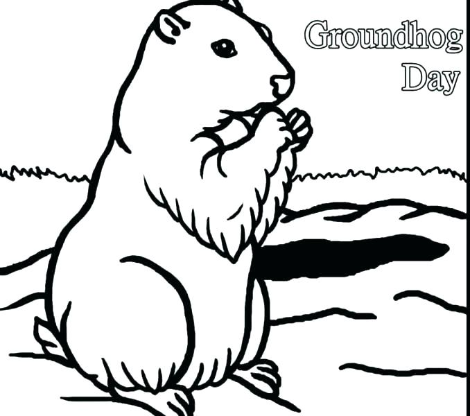 678x600 Groundhog Coloring Pages Groundhog Coloring Sheets Groundhog
