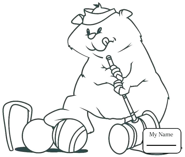 765x647 Groundhog Coloring Pages Groundhog Day Coloring Pages For Kids