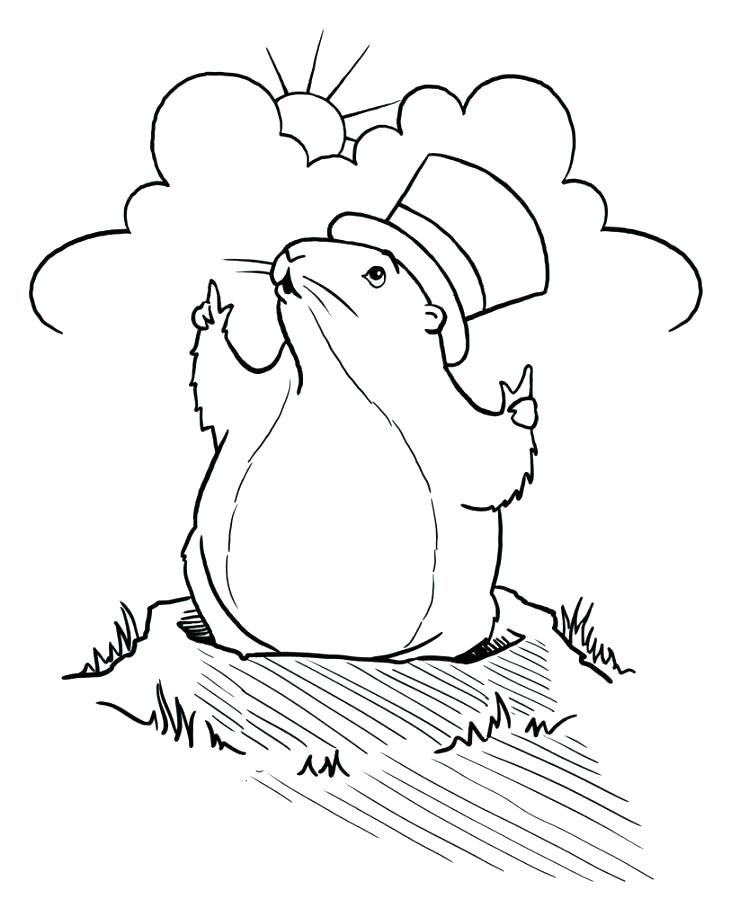 731x899 Groundhog Coloring Pages Preschool Groundhog Coloring Page Holding