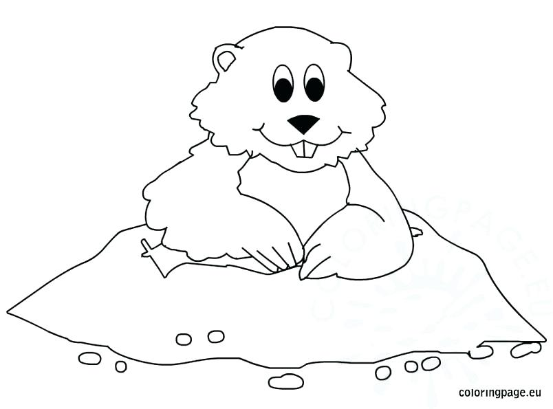 804x595 Ground Hog Coloring Pages Groundhog Day Coloring Pages In Snazzy