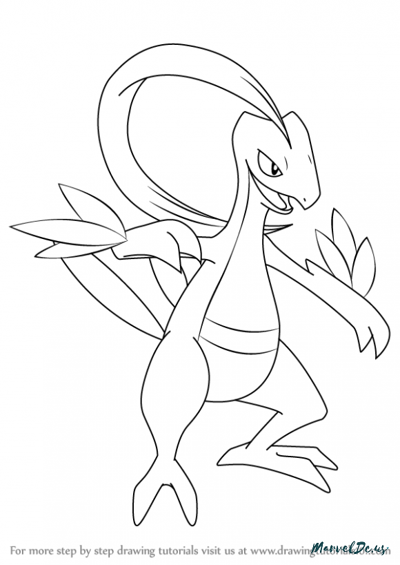 Grovyle Coloring Pages