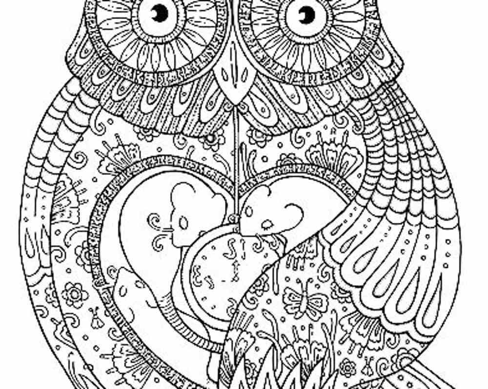 1000x796 Free Printable Adult Coloring Pages Owl To Print Coloring Sheets