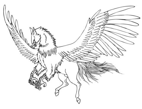 480x368 Cute Gryphon Coloring Page
