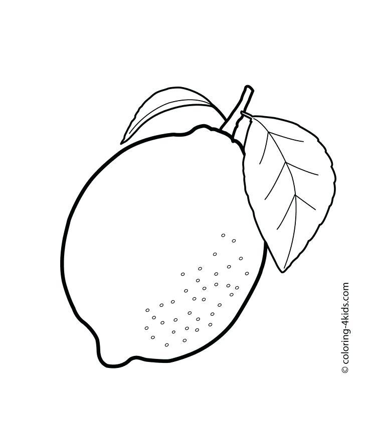 736x865 Fruit Color Pages Lemon Coloring Pages Fruit Color Pages To Print