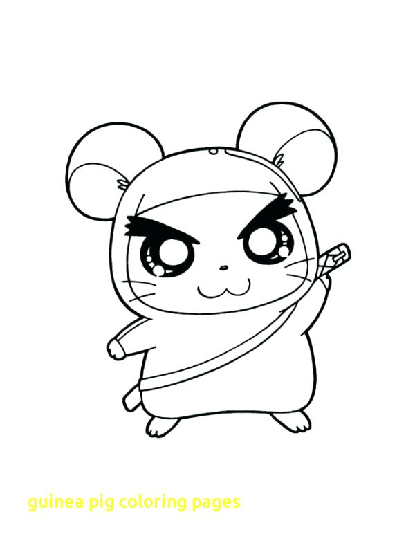 600x782 Guinea Pig Coloring Pages Top Free Printable Guinea Pig Coloring