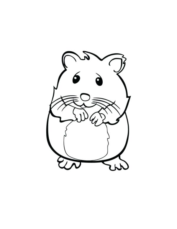 600x776 Guinea Pig Coloring Pages As Inspiring Guinea Pig Coloring Page