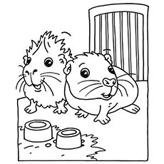 230x230 Top Free Printable Guinea Pig Coloring Pages Online Animal