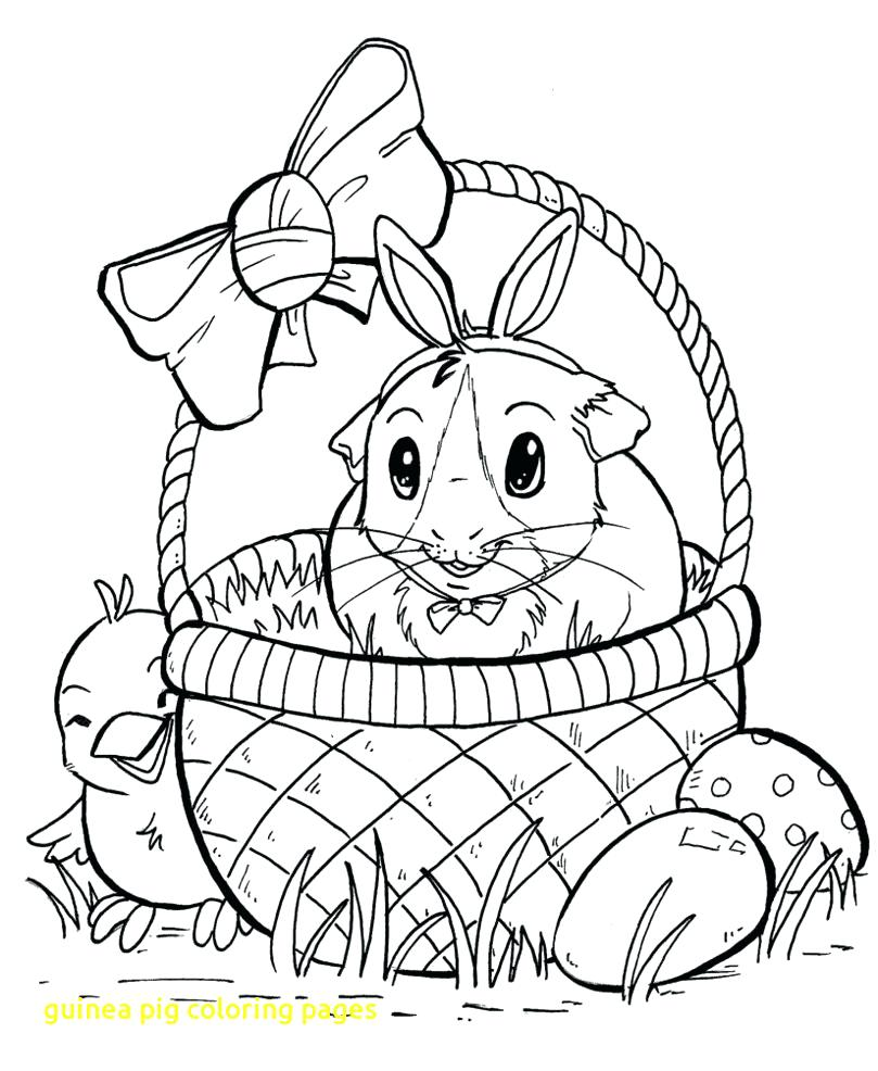 809x986 Coloring Page Guinea Pig Coloring Page Pages With Pigs Colouring