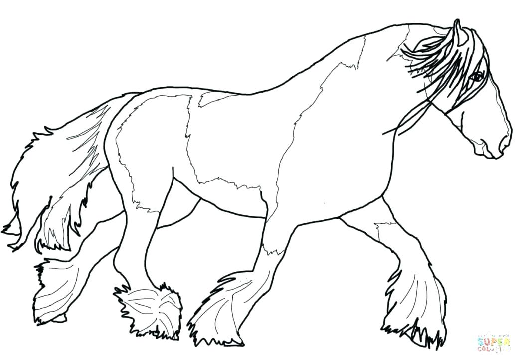 1043x726 Arabian Horse Coloring Pages Large Size Of Realistic Horse