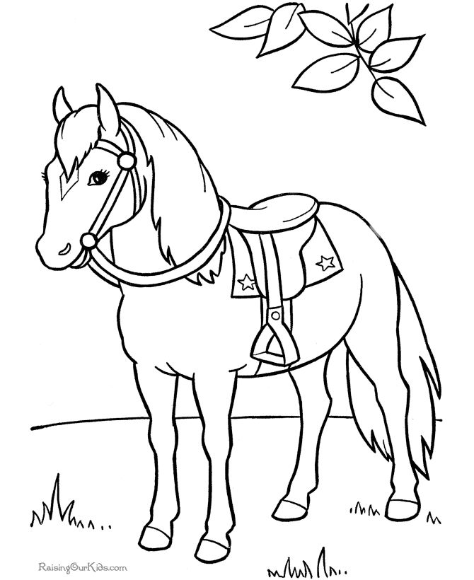 Gypsy Vanner Coloring Pages