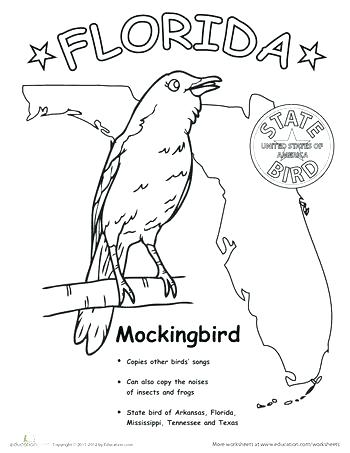 The Best Free Florida Coloring Page Images Download From 50 Free