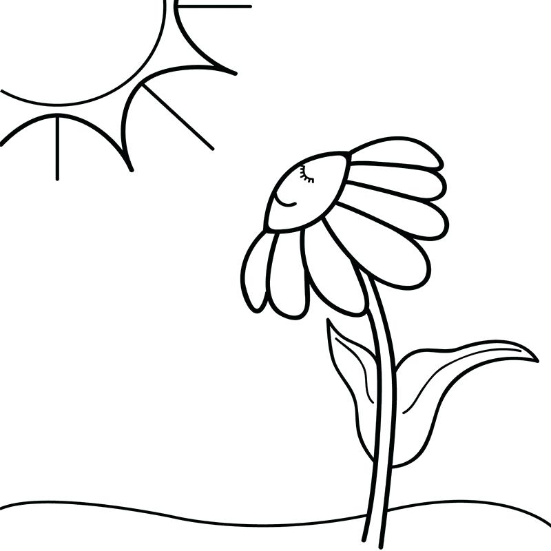 800x800 Half Moon Coloring Page Sun And Moon Coloring Pages For Adults