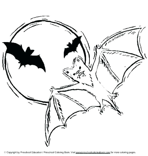 628x660 Halloween Bats Coloring Pages Coloring Pages Bats Bat Coloring