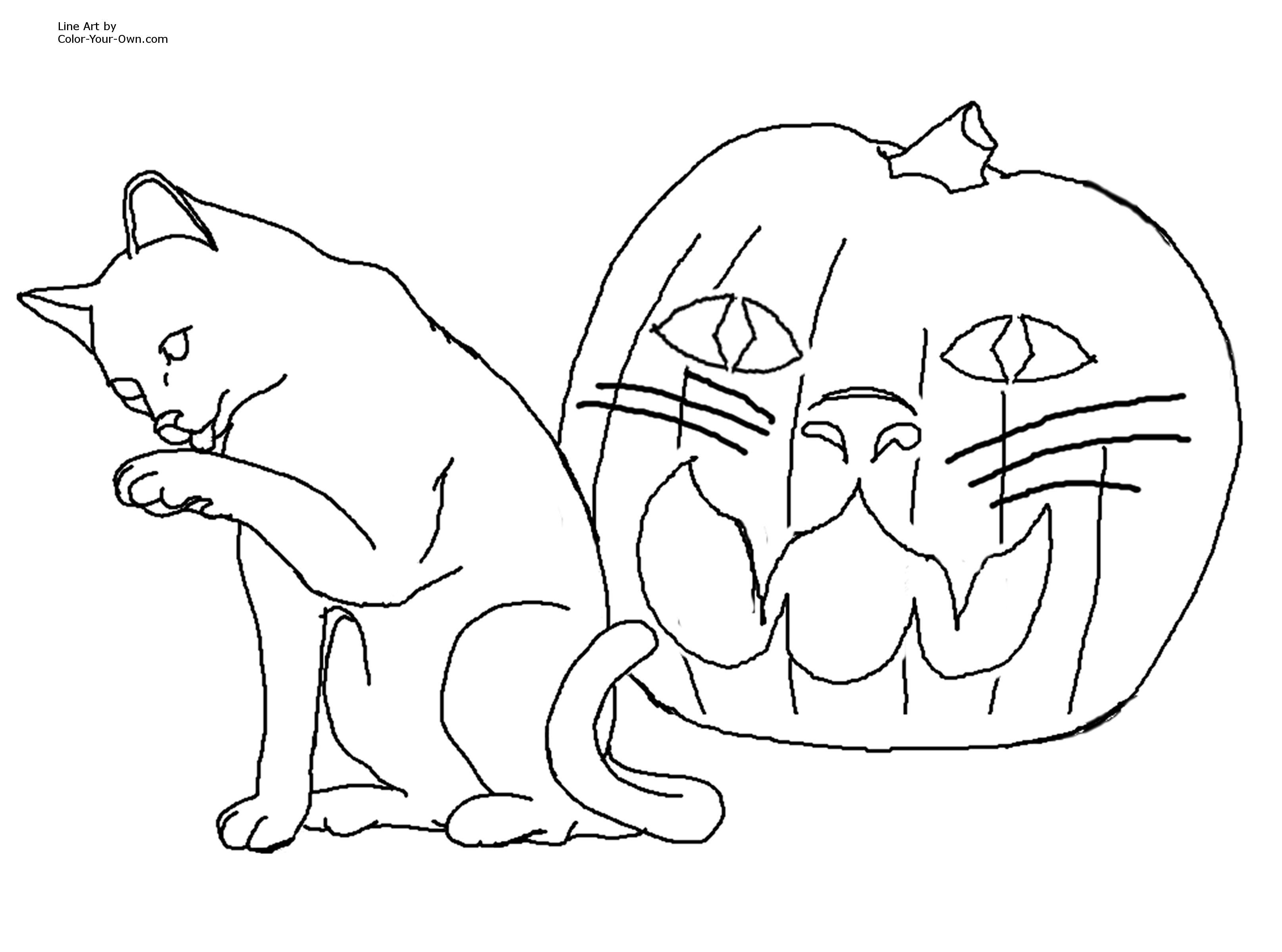 3232x2400 Gigantic Scary Black Cat Coloring Pages Halloween Page Free