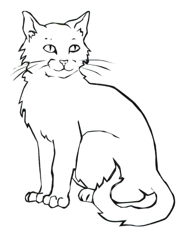 610x784 Halloween Cats Coloring Pages Cat Coloring Page Coloring Page