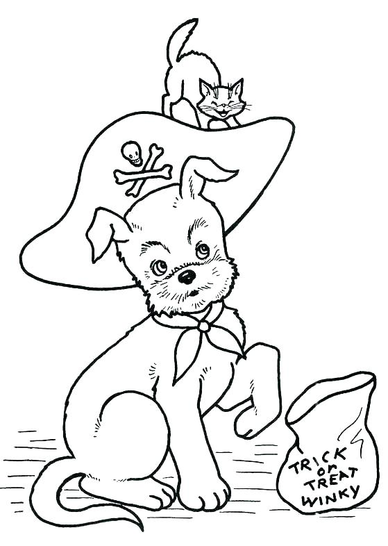 559x786 Black Cat Coloring Pages Black Cat Coloring Pages Cats Coloring