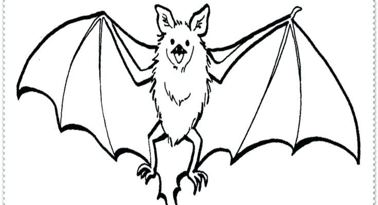 735x400 Coloring Page Ocean Sun Also Coloring Page Cartoon Bat Halloween