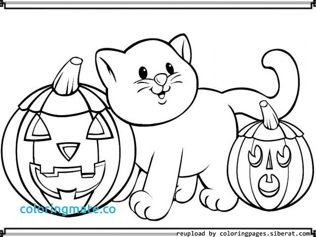 640x480 Halloween Coloring Pages Pdf