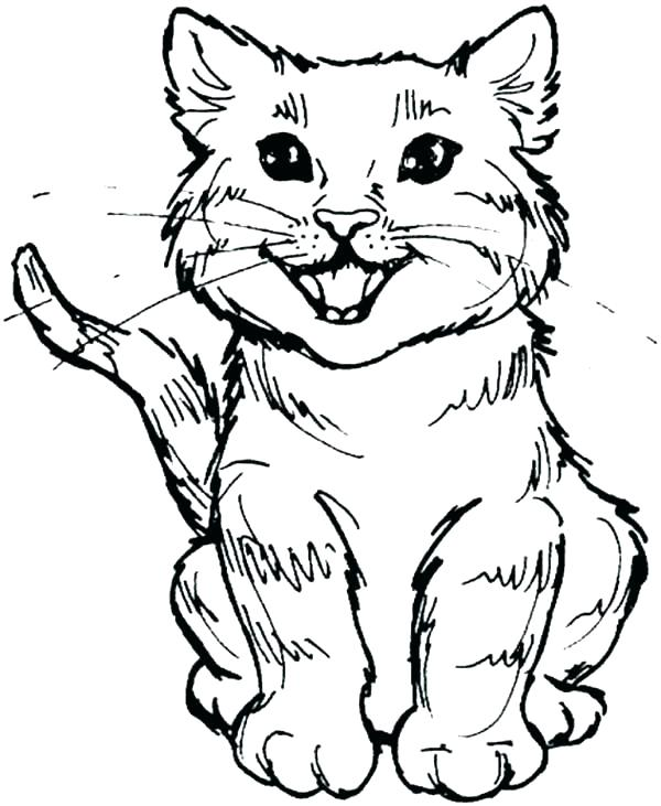 600x731 Halloween Cats Coloring Pages Cat Color Page Cat Coloring Pages