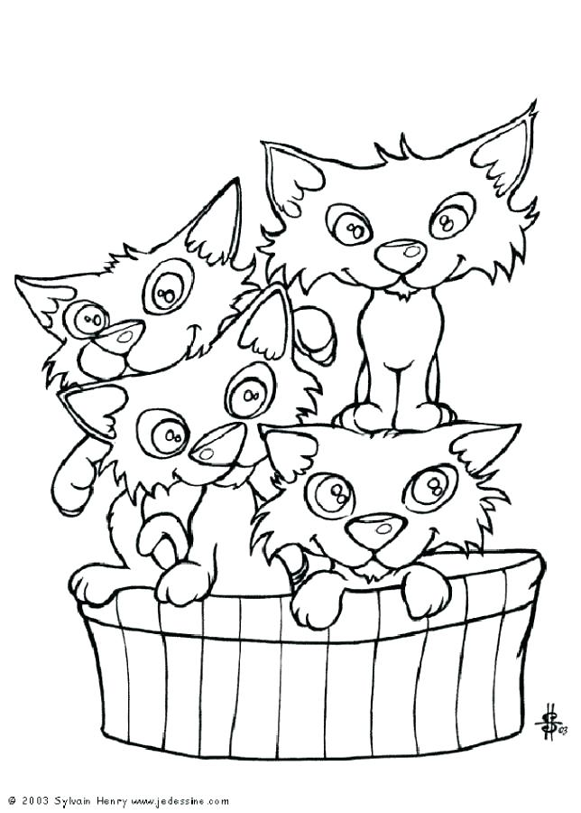 644x900 Halloween Cat Coloring Pages Cat Coloring Pages Cats Basket