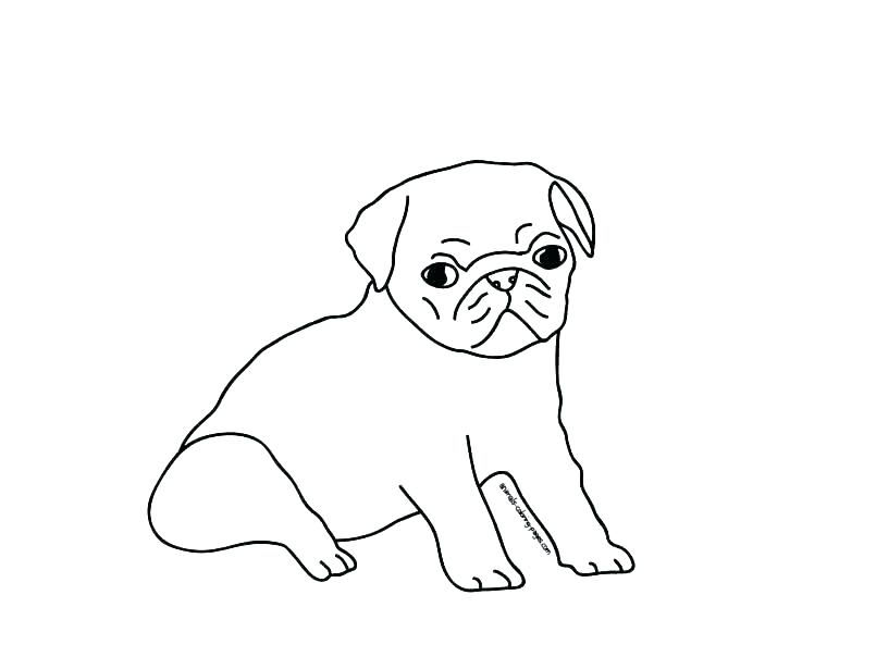 805x604 Pug Coloring Pages Printable Pug Coloring Pages Pug Puppy Coloring