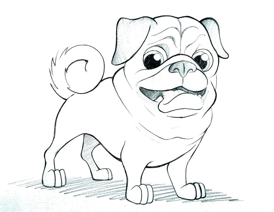 900x696 Pug Coloring Pages Pug Coloring Pictures Epic Pug Coloring Page