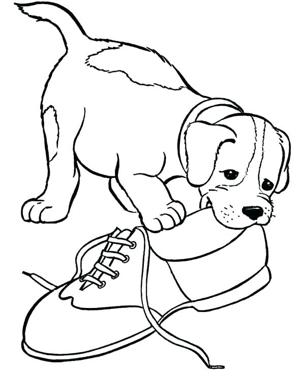 600x734 Puppy Pictures To Color Puppy Color Page Boxer Puppy Coloring Page