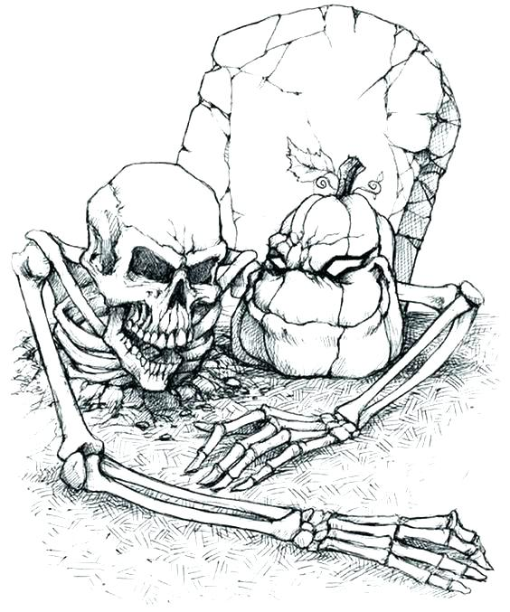 564x677 Halloween Skeleton Coloring Pages Skeleton Coloring Skeleton