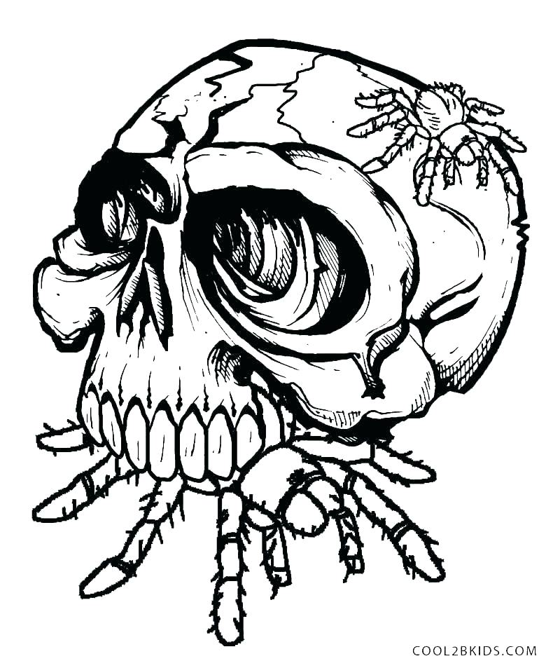 800x953 Skulls Coloring Pages Skull Coloring Pages Anatomy Anatomy