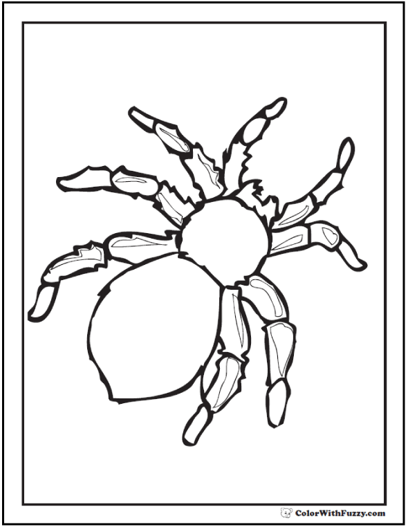 Halloween Spider Coloring Pages Printable