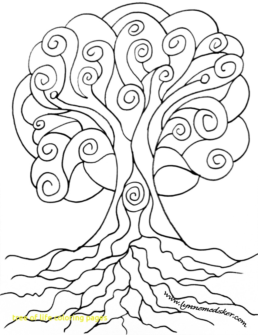 850x1100 Tree Of Life Adult Coloring Page And Pages