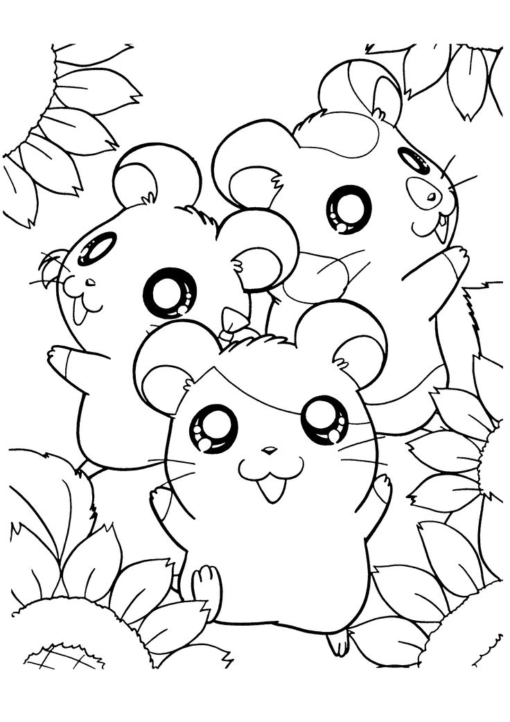736x1042 Drawn Hamster Colouring Page