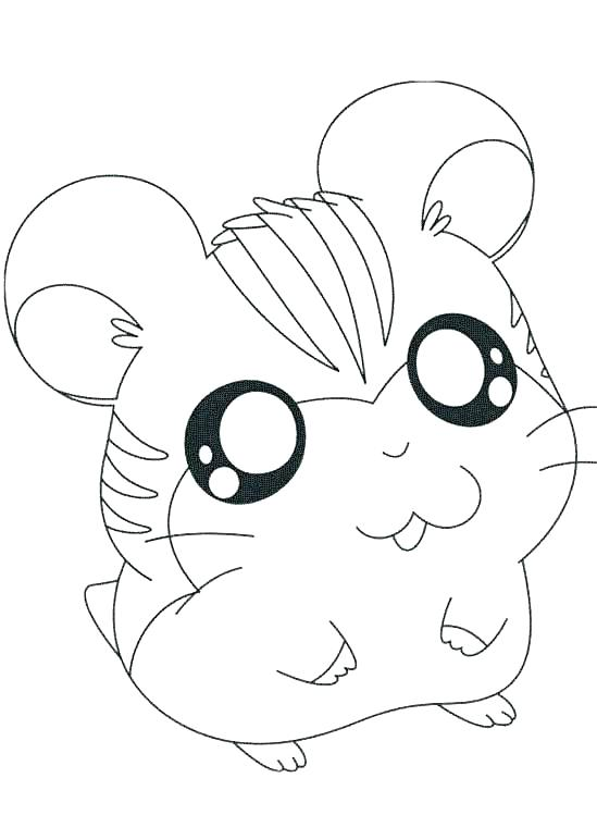 549x749 Gerbil Coloring Pages Hamster Coloring Pages Cute Hamster Coloring