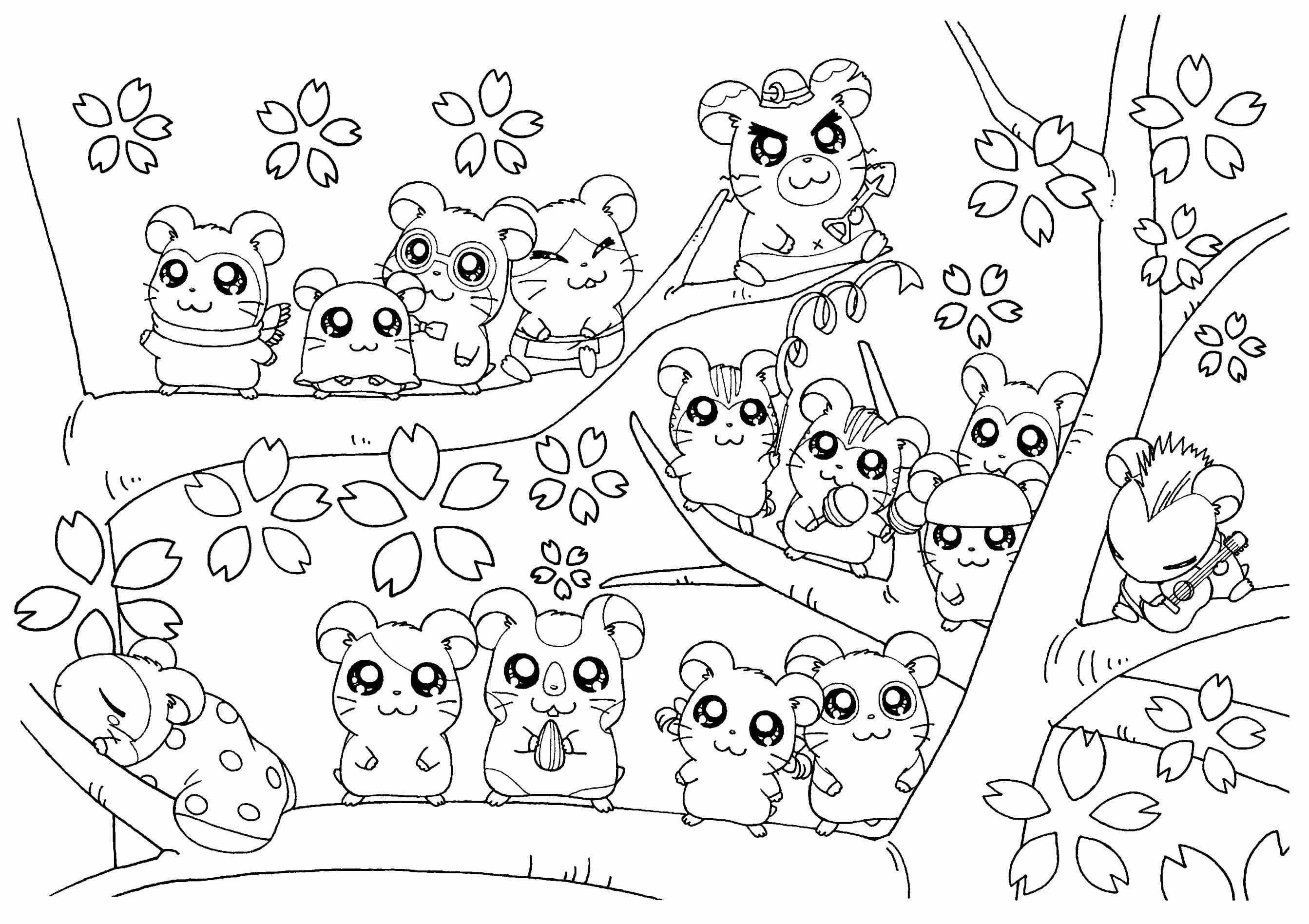 2686x1896 Bright And Modern Hamster Coloring Pages Wheel Cute Dwarf For Kids