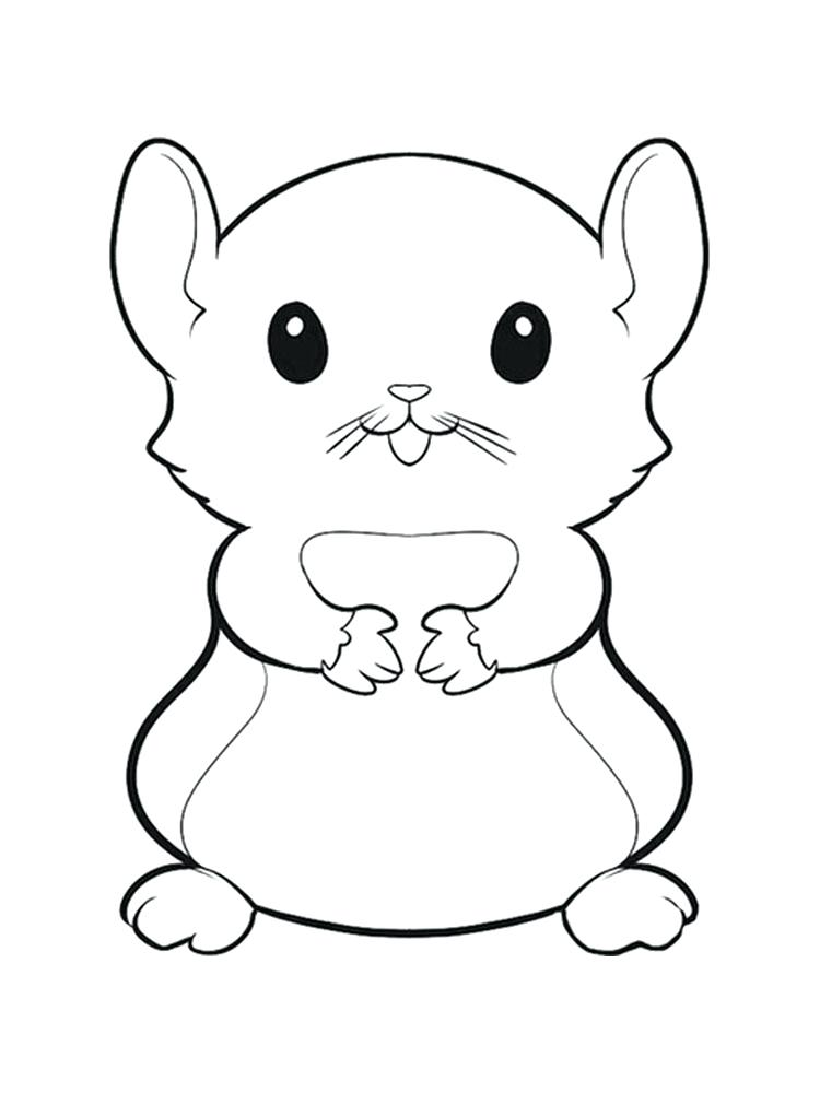 750x1000 Hamster Coloring Pages Free Hamster Coloring Page Hamster Coloring