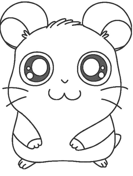 560x740 Hamster Coloring Pages To Print Printable Hamtaro The Hamster