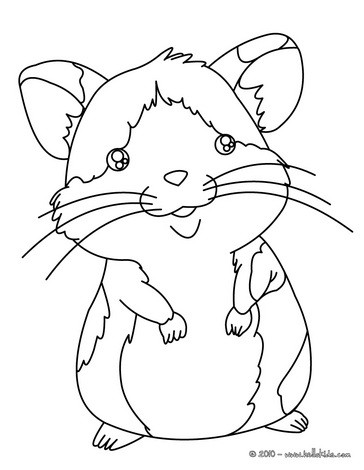 364x470 Hamster Coloring Page Nice Petsdrawing For Kids More Animals