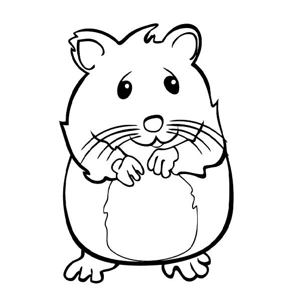 600x600 Hamster Pictures To Color Hamster Animals Printable Coloring