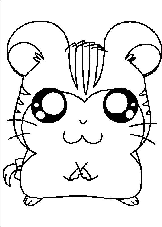 569x796 Cute Hamster Coloring Page Animal Pages