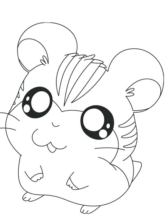 549x730 Cute Hamster Coloring Pages Pictures The Hamster Coloring Pages