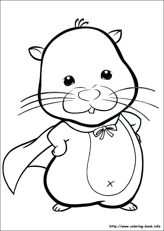 567x794 Cute Hamster Coloring Pages Printable Realistic Hamster Coloring