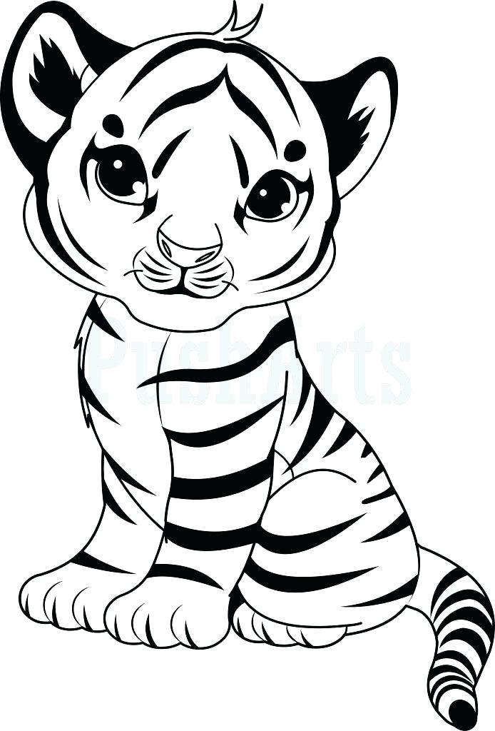 694x1024 Tiger Pictures To Color Tiger Coloring Book Pages Tiger Color