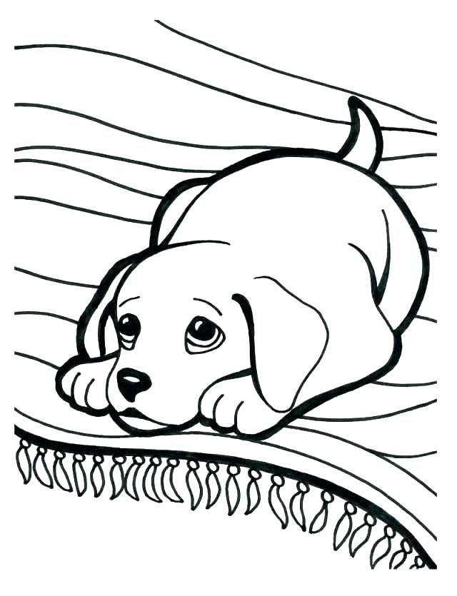 640x835 Funny Animal Coloring Pages Funny Coloring Pages Funny Animal