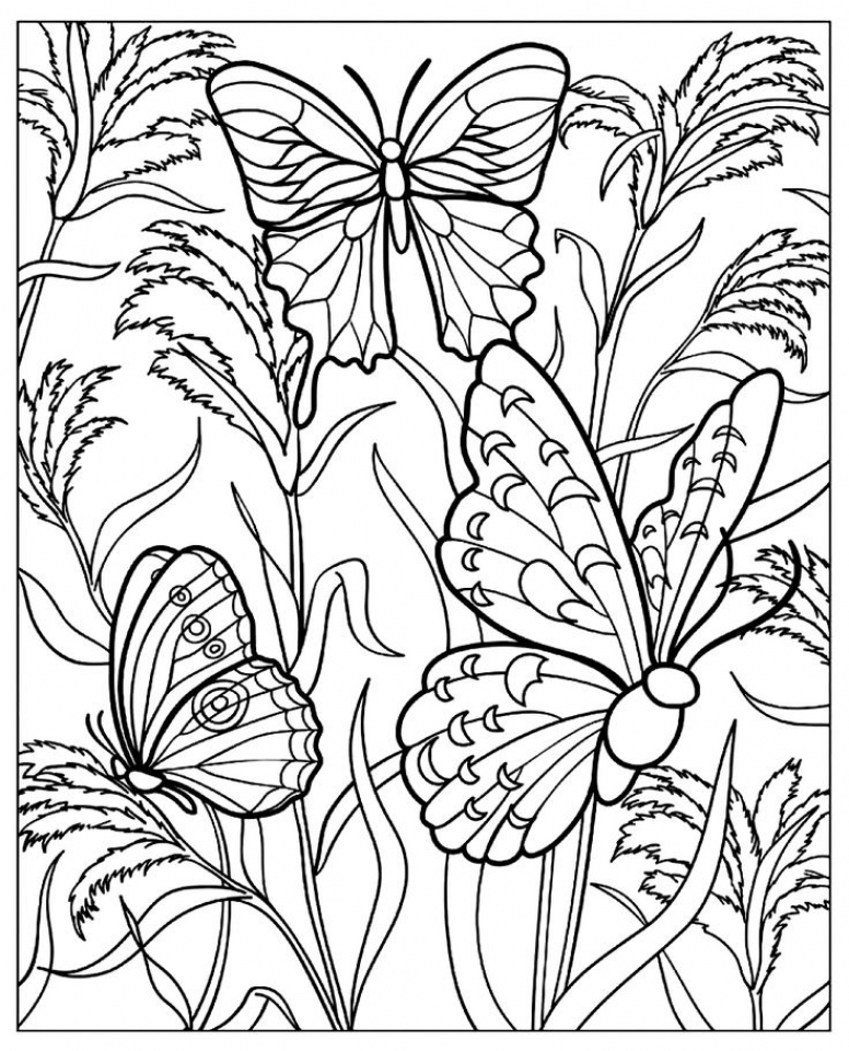 776x960 Free Printable Butterfly Coloring Pages For Adults