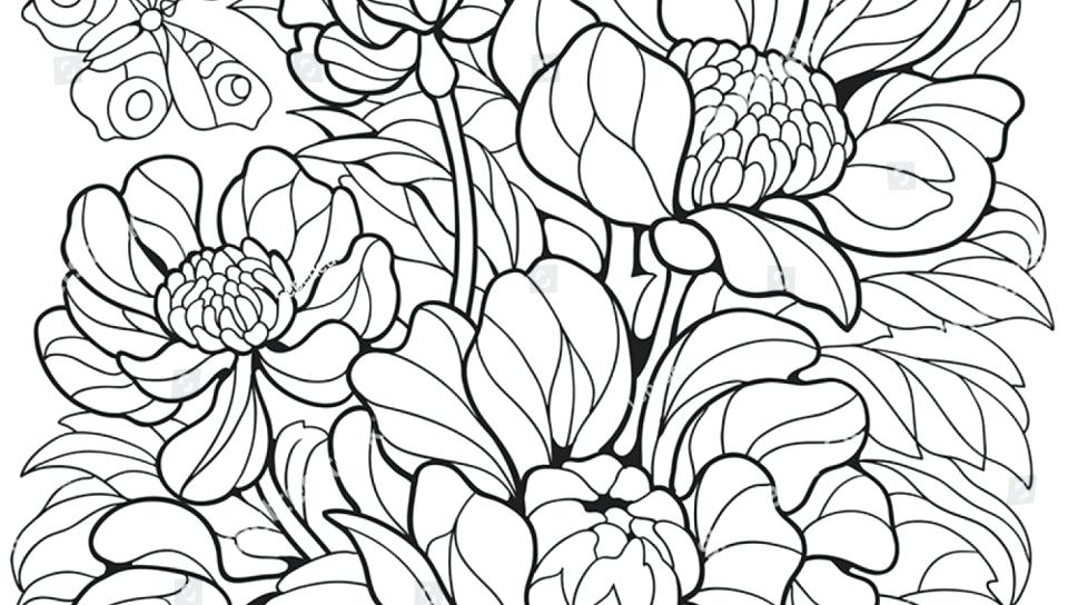 960x544 Free Printable Butterflies And Flowers Coloring Pages For Kids