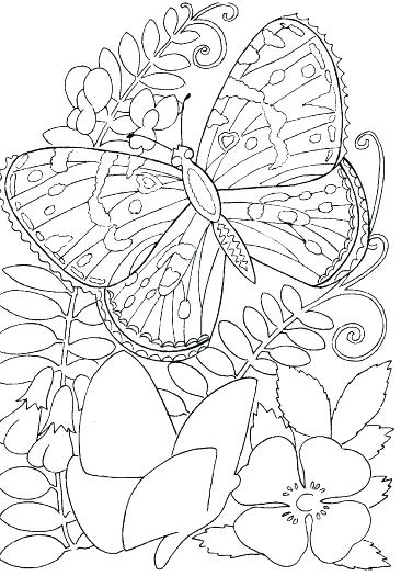366x525 Hard Flower Coloring Pages Perfect Hard Flower Coloring Pages Hard