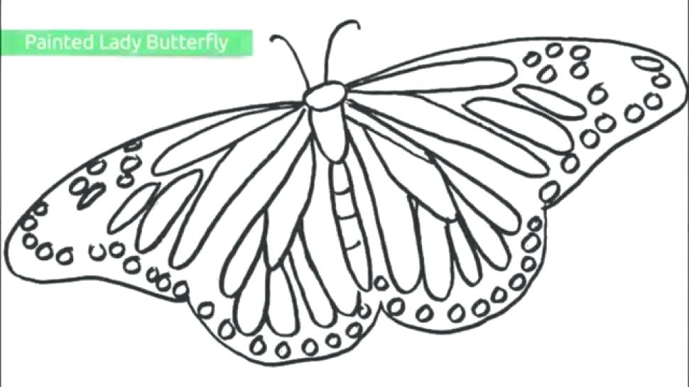 970x546 Unique Butterfly Coloring Pages For Kids For Adult Difficult Big