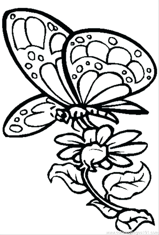 650x958 Coloring Pages Flowers And Butterflies